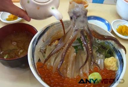 Menu Gurita Hidup - blog.lakupon.com