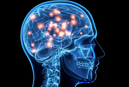 Otak Manusia - blog.act.id
