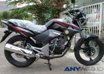 Honda Tiger Revo: Spesifikasi, Kelebihan, dan Kelemahan