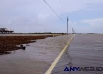 Isle de Jean Charles, Kota kecil di Amerika yang Menunggu untuk Tenggelam